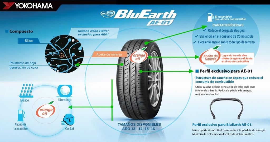Infografia BluEarth2